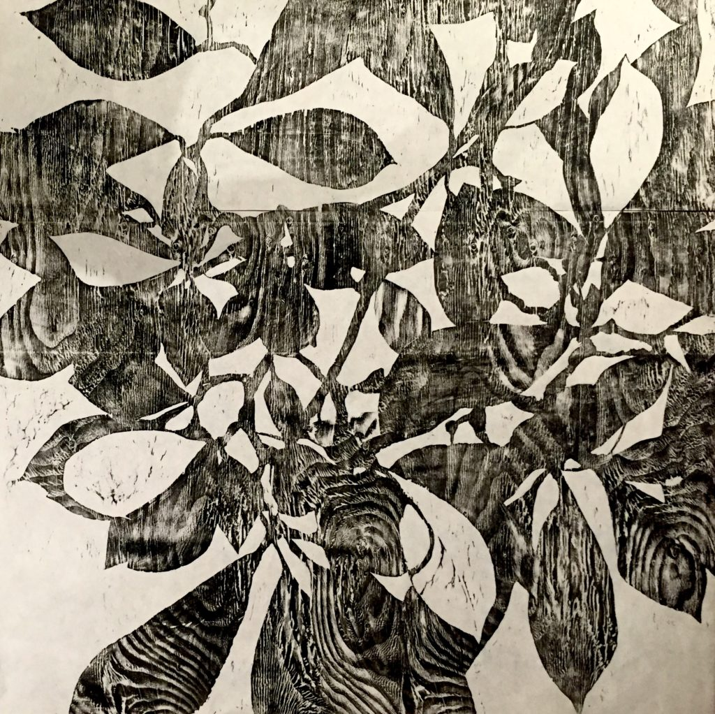 zebra-magnolia-woodcut-proof-36x36-2016